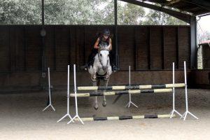 ado sur cheval à l'école d'équitation Equival Valréas